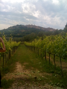 A view of Montepulciano as we walk home