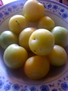 Italian plums...Susini