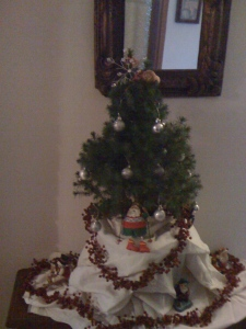 My very first Italian Christmas tree from four years ago...it spends the off season in Marinella's garden